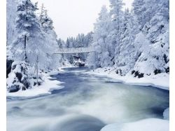 Фото зима природа скачать