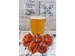 Красивые прикольные картинки пива