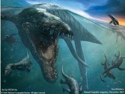 Команда кусто подводный мир