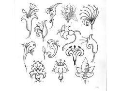 Красивые цветы рисунки 3