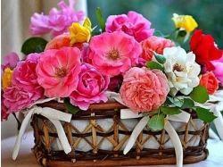 Красивые цветы с днем рождения 5