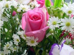 Красивые цветы с днем рождения 6