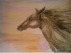 Картинки красивых пони и лошадей