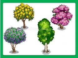 Картинки кустарники для детей 4