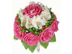 Цветок замиокулькас фото