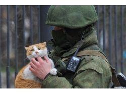Скачать картинку солдат с ребенком 2