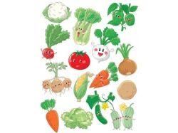 Овощи картинки для детей наглядный материал скачать 2