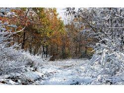 Красивые пейзажи зимы картинки 2