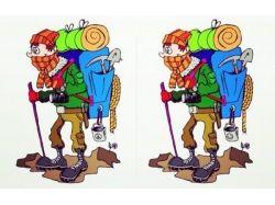 Картинки для детей найди двух одинаковых животных 1