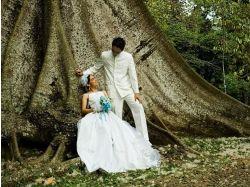 Обои свадьба на рабочий стол 6