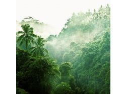Красивые картинки острова бали 5