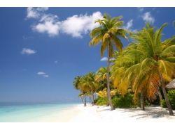 Красивые картинки острова бали 6