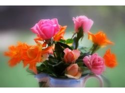 Очень красивые цветы фото