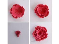 Цветы на открытки своими руками 5