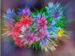 Цветы картинки рабочий стол 4