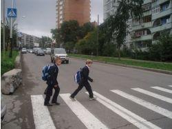 Правила безопасности на пешеходных переходах для детей в картинках 5
