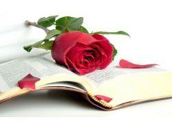 Библия обои на рабочий стол 1