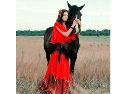 Новогодние фотографии с лошадью 1