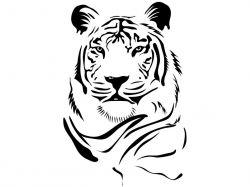 Авто тигр фото 7
