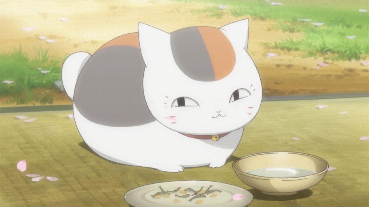 Картинки аниме кошек » Скачать лучшие картинки бесплатно ...