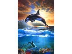 Рисунки подводного мира
