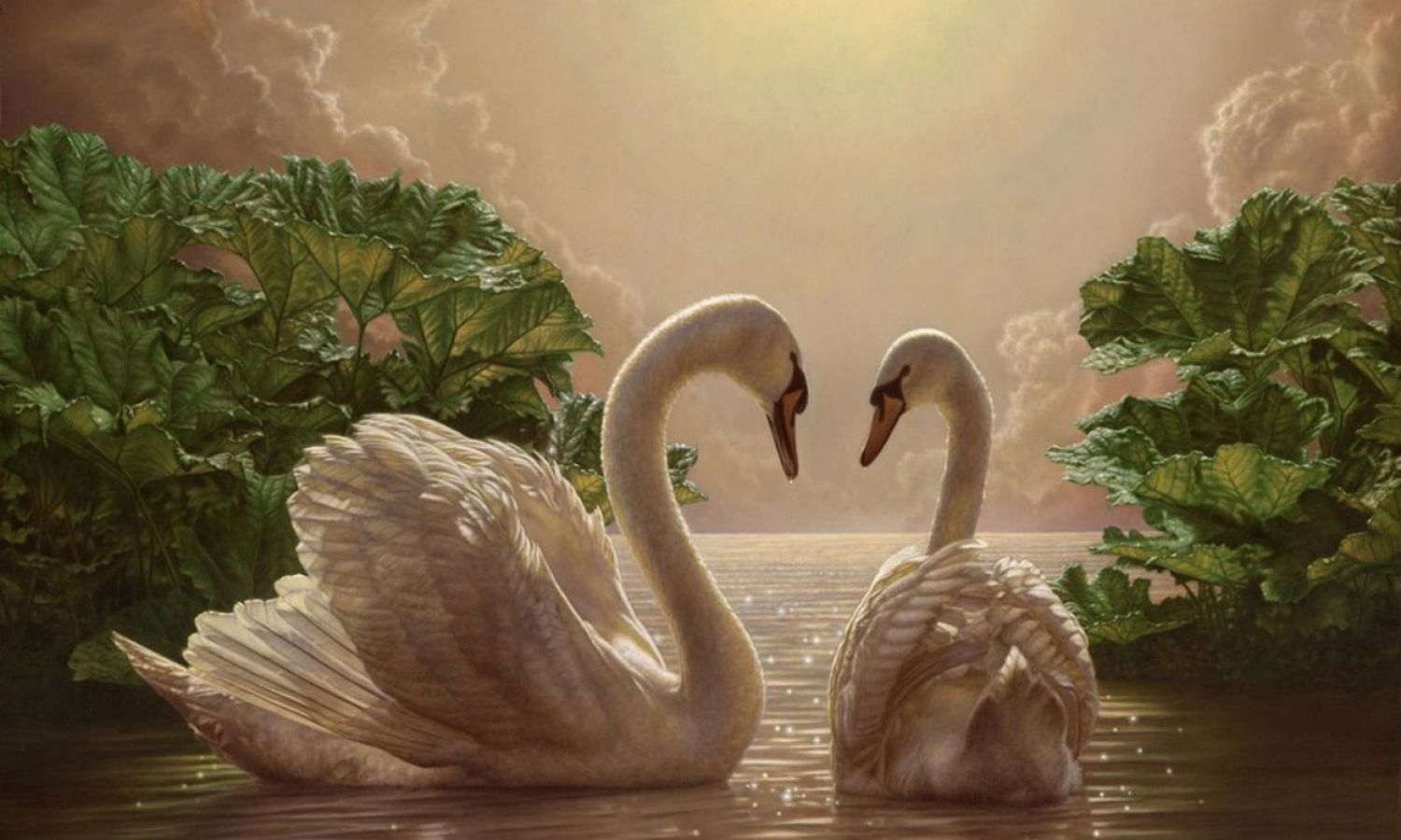 Anyones ghost silver swans download adobe