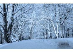 Фото для рабочего стола зима