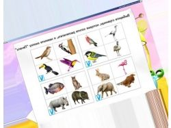 Детские картинки животных для детей 9
