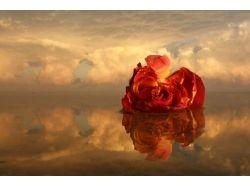 Картинки романтические