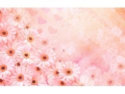 Узоры цветов