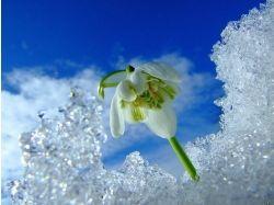 Фото дня зима