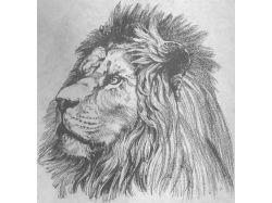 Рисунки простым карандашом природа