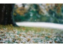 Поздняя осень картинки на рабочий стол
