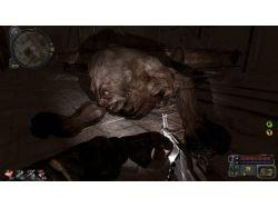 Чернобыль фото мутантов людей и животных 9