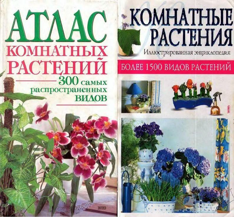Энциклопедия комнатные растения и уход в картинках