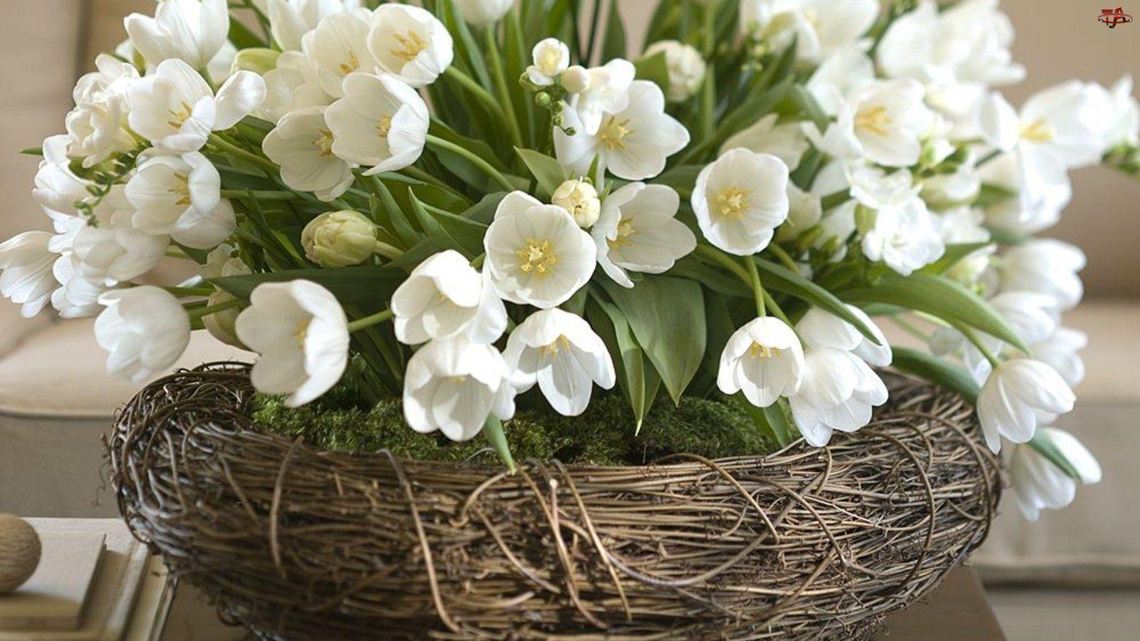 С днем рождения картинки весенние цветы