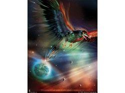 Картинки ворона