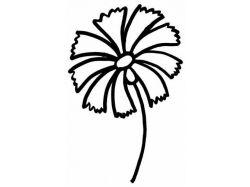 Цветы картинки нарисованные