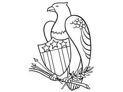 Орел раскраска