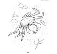 Картинки животных рисунки