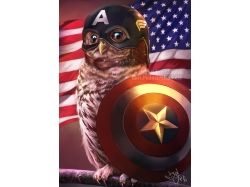 Фото американского флага