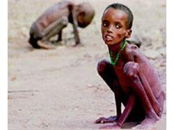 Дети африки голодают фото
