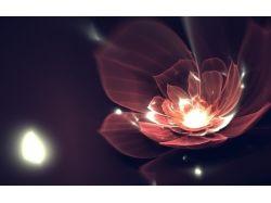 Абстрактные цветы картинки 5