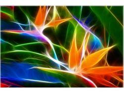 Абстрактные цветы картинки 8