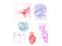 Медицинские картинки скачать бесплатно
