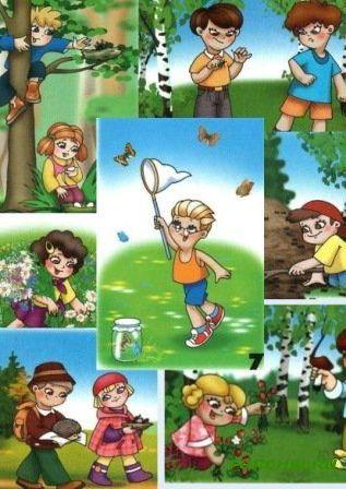 Картинка для детей правила поведения в лесу для 19