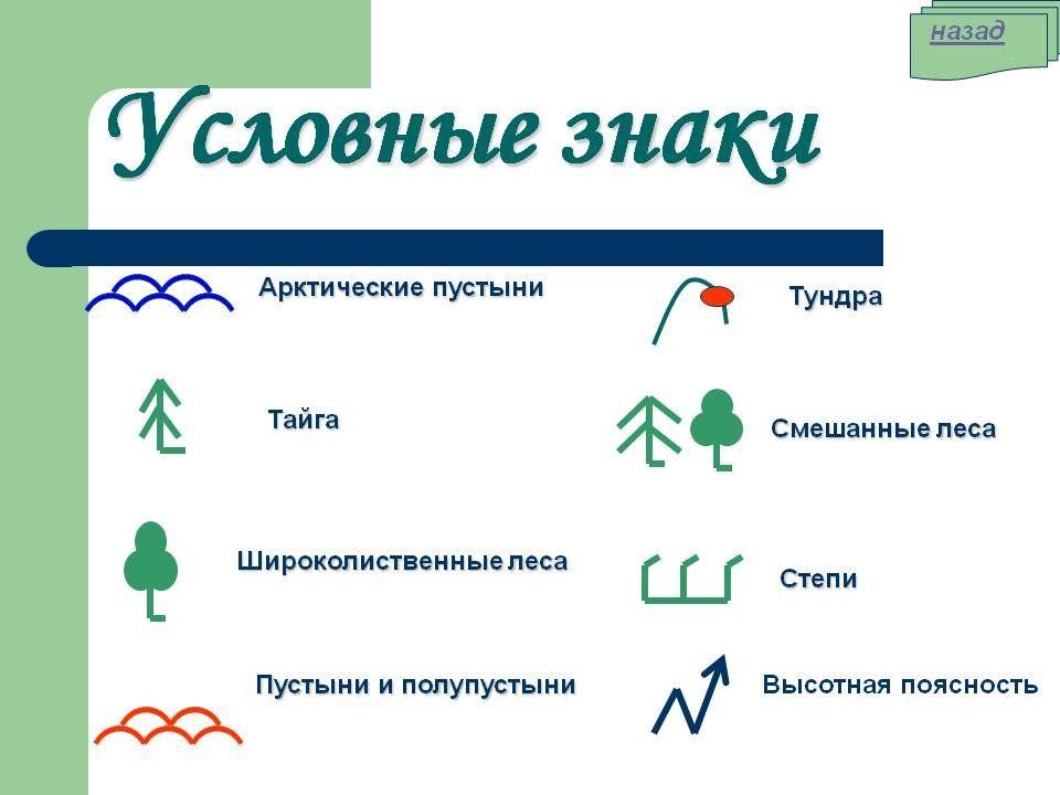 Как географии в знаком обозначается леса условным