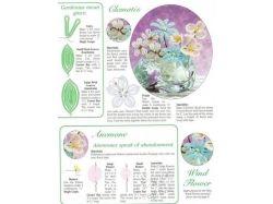 Цветы из бисера схемы фото