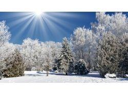 Фото зима на рабочий стол