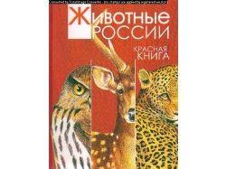 Красная книга животных фото